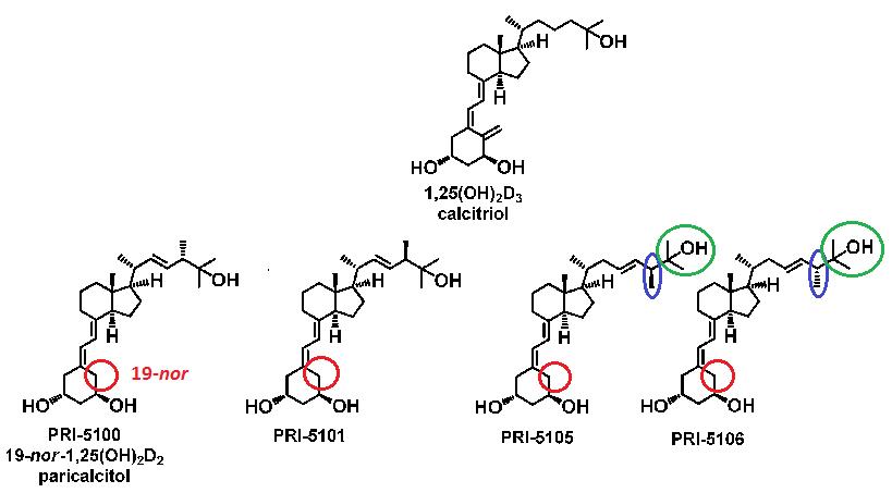 Struktura chemiczna analogów 1,25-dihydroksywitaminy D.